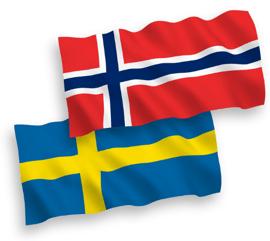 NOSWEflag